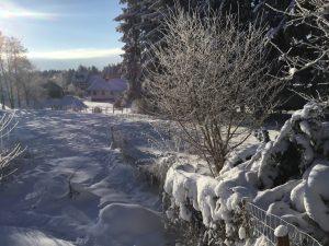 Wintersport in de Eifel